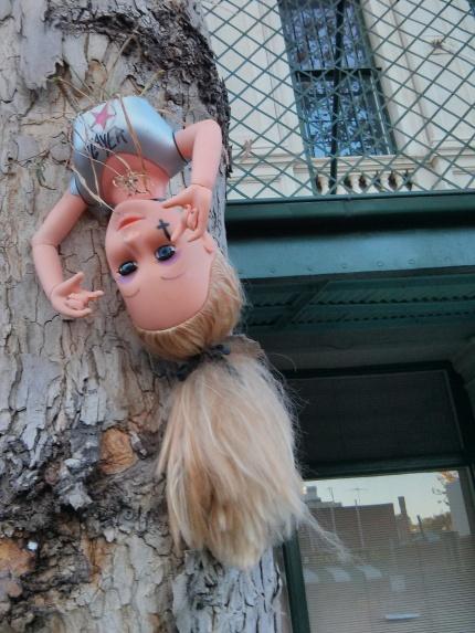 upside down : fitzroy