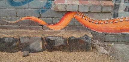 versa tentacle : northcote