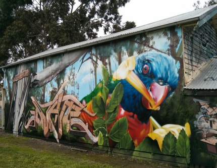 northcote rifle club : lorikeet