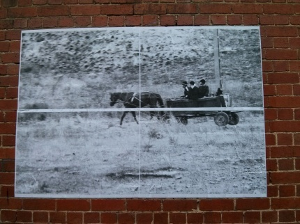 horse and cart : fitzroy
