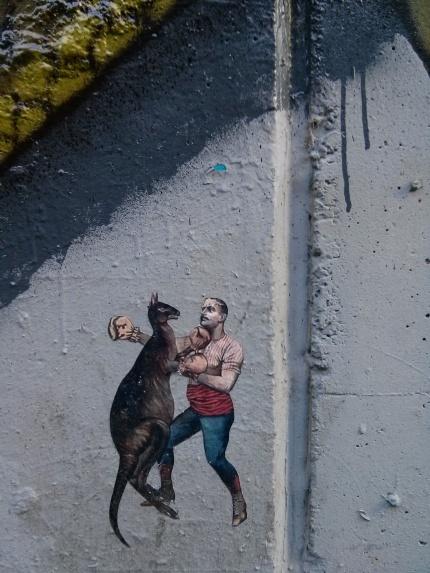 boxing kangaroo pasteup : fitzroy