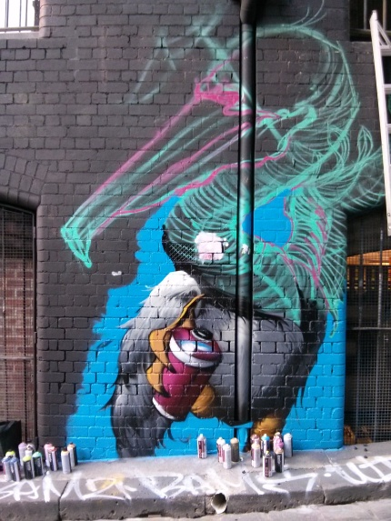 all your walls : steve cross, hosier lane wip