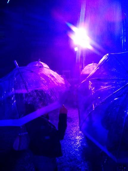 purple rain : white night melbourne 2014