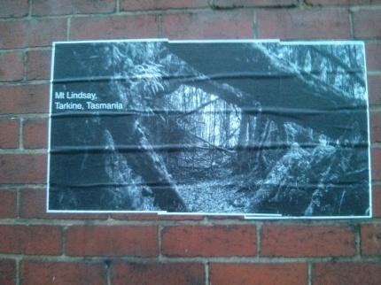 mt lindsay, tarkine tasmania : westgarth st northcote