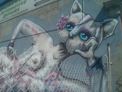 makatron and dukestyle cat collab collingwood