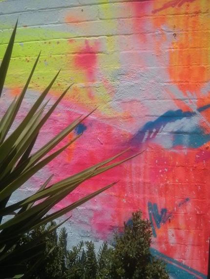 senekt and jun : northcote wall and plants